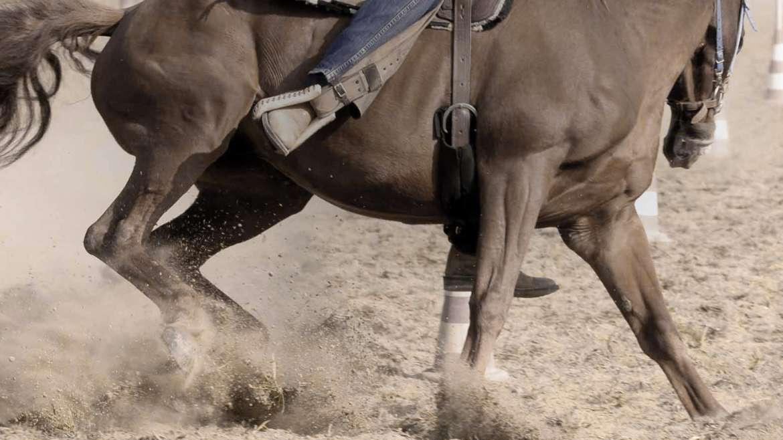 Pistezand om paardenpistes aan te leggen.